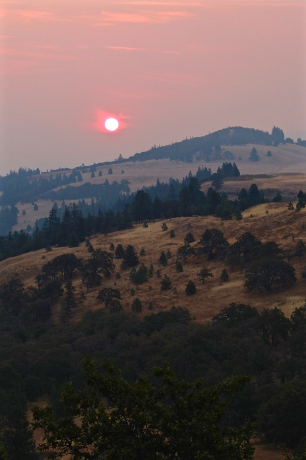 Sunrise through wildfire smoke over Mosier bluff, OR